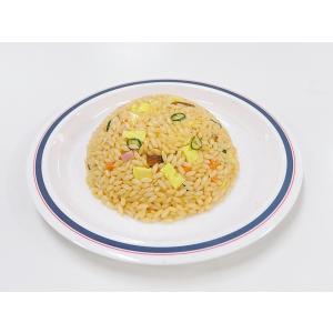 チャーハン 食品サンプル|fakefoodjapan
