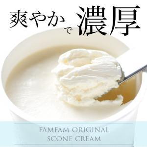 famfamスコーンクリーム(4個入)|famfam