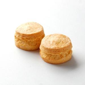 スコーン リッチハニープレーン 2個入り|famfam