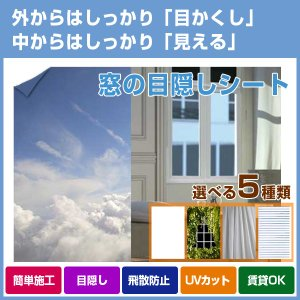 窓の目隠しシート|fami-renovation