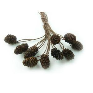 ヤシャブシ(ハンの実)大小アソート ナチュラル 1.5〜3cm(1個) 松ぼっくり クリスマスの実物 天然素材|familiamia