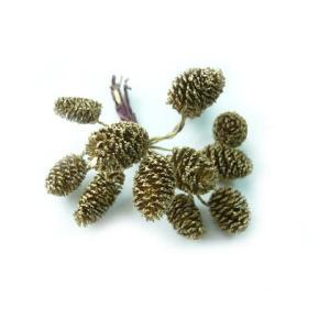 ヤシャブシ(ハンの実)ワイヤー付 ゴールド 1.5〜3cm(1個) 松ぼっくり クリスマスの実物 天然素材|familiamia