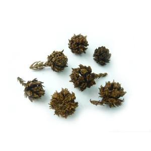 松かさ ミニ ナチュラル 1.5〜3cm(1個) 松ぼっくり クリスマスの実物 天然素材 familiamia