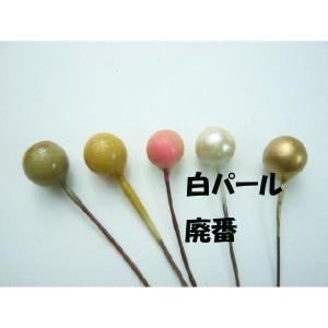 【処分品】実物 フルーツ 丸玉7mm〜11mm(1本)|familiamia