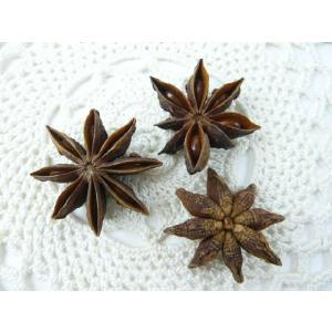 スターアニス N 約3cm(1袋約20個) ナチュラル 松かさ クリスマス飾り 実物 天然素材 familiamia