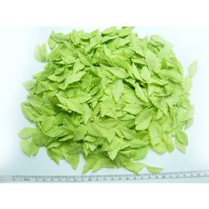 アウトレット若草色の葉 ポプリン(約1980〜2000枚)|familiamia