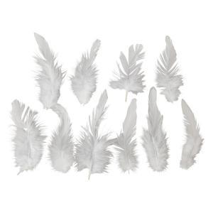 羽 パーツ キャラオ小(10枚) フェザー 羽 パーツ根 フェザー 手芸材料 パーツ ナチュラルな素材|familiamia