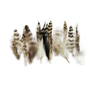 羽 パーツ 鶏 ブリモース キャラオ(10枚)(ナチュラル) 1枚7〜15cm #33 羽 パーツ根 フェザー 手芸材料 パーツ|familiamia