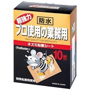 SHIMADA ダイナソーシリーズ ネズミバスターブック型10P family-tools
