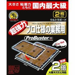 SHIMADA プロバスター 超特大ウルトラボード 2P family-tools