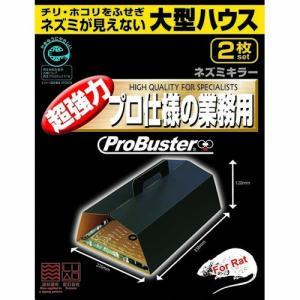 SHIMADA エコシリーズ 大型ハウス ネズミキラー2P family-tools