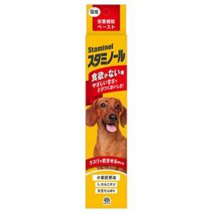 アース 栄養補給ペースト スタミノール 犬用 100g サプリメント 健康維持 夏バテ対策 (66107000) familypet