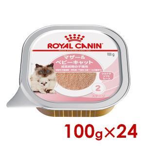 ロイヤルカナン FHN-WET ベビーキャット 100g× 24(s5290008)