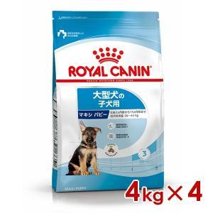 ロイヤルカナン SHN マキシパピー 4kg×4 大型犬・子犬用 生後15ヵ月齢未満 ※お一人様5個まで|familypet