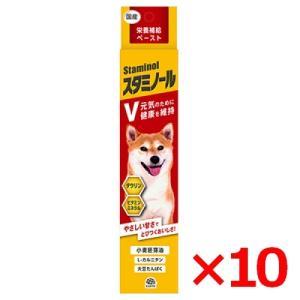 栄養補給ペースト スタミノールV 100g ×10個 (s6610001) familypet