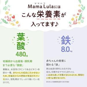 Mama Lula (ママルラ) 葉酸&鉄プラス 約30日分 【ファンケル 公式】 葉酸 鉄 サプリメント 無添加 FANCL 送料無料 fancl-y 06