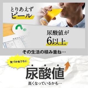 尿酸サポート<機能性表示食品> 約30日分【ファンケル 公式】送料無料 FANCL 尿酸値 アンペロプシン キトサン サプリメント fancl-y 05