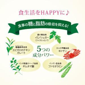 カロリミット<機能性表示食品> 約30回分 【ファンケル 公式】サプリメント 送料無料 キトサン ギムネマ カロリー|fancl-y|02
