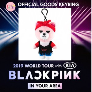 BLACKPINK [KEYRING] 2019 WORLD TOUR BLACKPINK IN YOUR AREA OFFICIAL GOODS【YG公式グッズ】 fani2015
