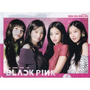 BLACK PINK (ピンク、ホワイト) A4サイズクリアファイル【メール便可】 fani2015