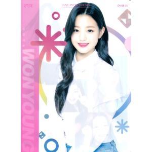 IZONE アイズワン iz*one チャンウォニョン(ピンク)A4サイズクリアファイル【メール便可】 fani2015