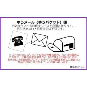 [メール便可]SEVENTEEN(セブンティ-...の詳細画像2