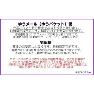 [メール便可]SEVENTEEN(セブンティ-...の詳細画像3