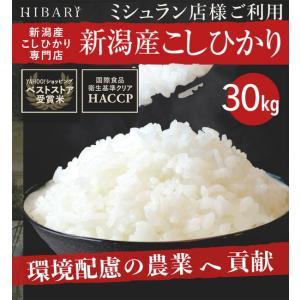 米 30kg お米 白米 新潟産コシヒカリ30kg 玄米 (...