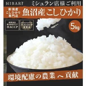 米 コシヒカリ 5kg 魚沼産 お米 29年産 新潟 魚沼産...