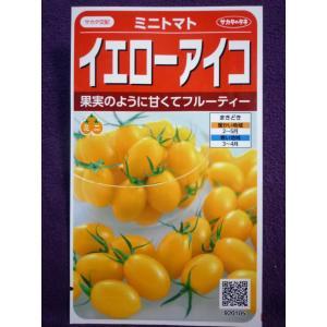★種子★ イエローアイコ ミニトマト V サカタのタネ 20.10 (ゆうパケット便可能)