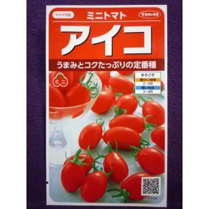 ★種子 アイコ ミニトマト V サカタのタネ 20.10 (ゆうパケット便可能)