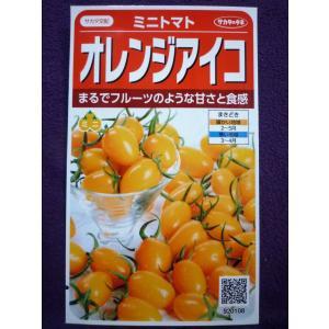 ★種子★ オレンジアイコ ミニトマト V サカタのタネ 20.10 (ゆうパケット便可能)