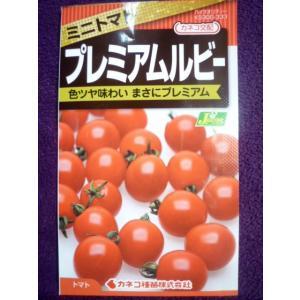 ★種子★ プレミアムルビー ミニトマト カネコ種苗 20.11 (ゆうパケット便可能)