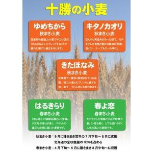 「さらさ」北海道産菓子用小麦粉きたほなみ100% 1kg farmtokachi 02