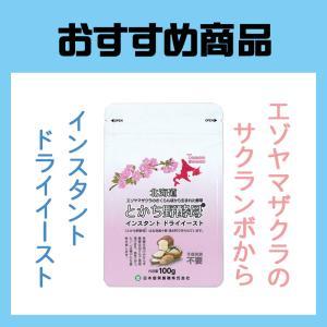 ニッテン とかち野酵母 インスタント ドライイースト100g farmtokachi