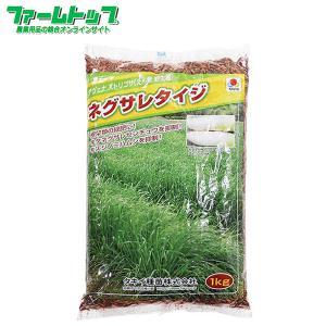 えん麦の野生種でダイコンなどの前作として栽培することにより、キスジノミハムシの密度を抑制します。 連...