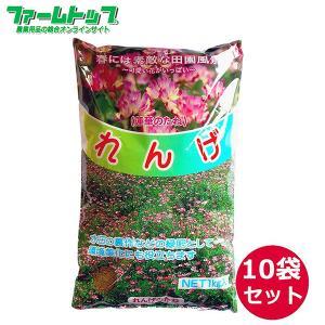 【1kg/1118円】れんげの種 花の種 種子 レンゲ草 レンゲの種  花の種  1kg×10袋セッ...