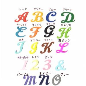 【カット】【大】【筆記体】イニシャル数字のアイロンワッペン|farnnie-ya