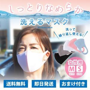 [GWセール]花粉 マスク 洗える 6枚セット 3枚入り×2パック スパンデックス やわらか しっか...