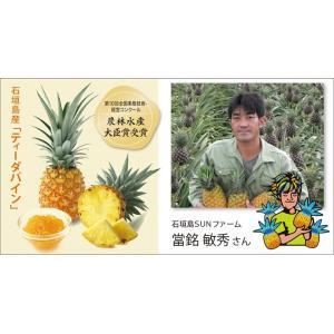 おきなわと太陽のRegaro(レガロ) fashioncandy 03