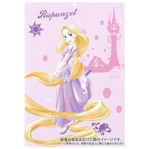 ディズニー やわらかタッチキャラクター毛布 ラプンツェル シングルサイズ 140×200cm やわらか ボア fashionichiba-sanki 06