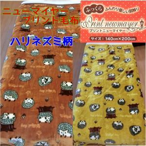 ニューマイヤープリント毛布/シングルサイズ ハリネズミ柄 【ゆうパケット不可】 サンキ/sanki|fashionichiba-sanki