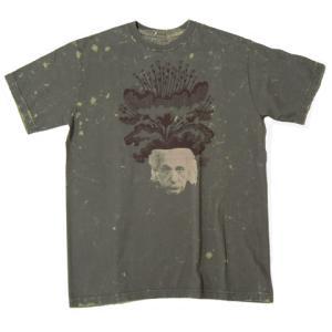 FRESH JIVE フレッシュジャイブ プリント Tシャツ SKATE グラフィティー ロサンゼルス LA アインシュタイン T/S fatmoes
