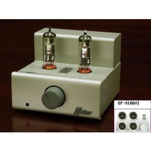 【エレキット TU-8100+OP-8100】アンプキットにドレスアップオプションをセット