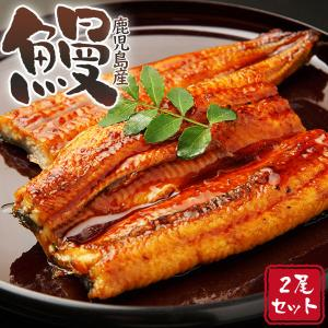 お中元 御中元 うなぎ 国産 蒲焼き  (鹿児島産大鰻約170g×2)ギフト 送料無料 ウナギ