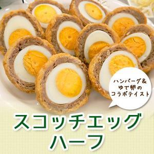 スコッチエッグ ハーフ(50g×10) 冷凍食品 お弁当 弁当 食品 食材 たまご 卵 おかず 惣菜 業務用 家庭用 国産 キューピー|fbcreate