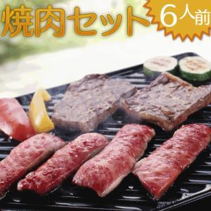 bbq 業務用 家庭用 バーベキュー セット 焼肉 焼き肉 6人前 bbq 業務用 家庭用|fbcreate