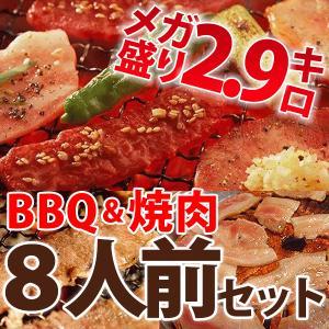 BBQ バーベキュー セット 焼肉 焼き肉 8〜10人前 bbq