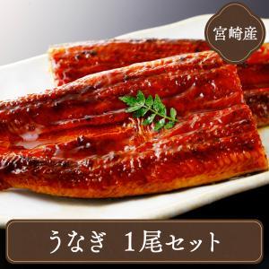 (うなぎ 鰻) 蒲焼 (国産大ウナギ 鹿児島産鰻約170g)...