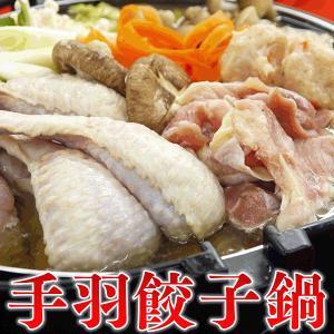 鍋セット 味が選べる手羽餃子鍋セット 送料無料(4〜5人前) 業務用 家庭用|fbcreate